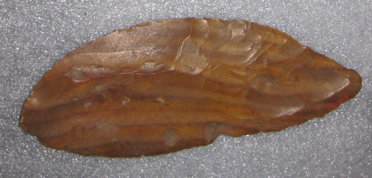 Flints were an improvement of old pre-neolithic technology. Early humans applied the same techniques to new materials, and produced much more durable results.